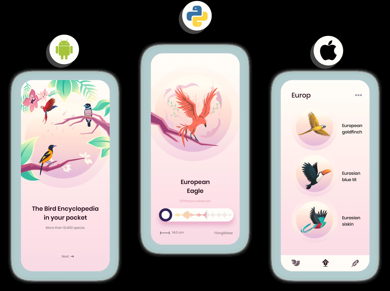 mobile app development-2-elements-1
